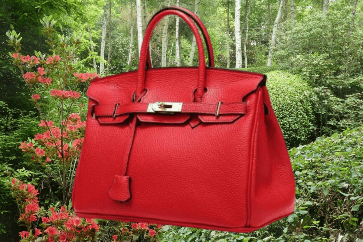 Sac Hermès Birkin IconPrincess